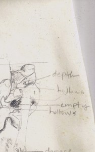 notes for drawing the skull of a whale