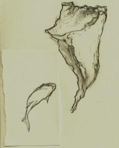 fish/shell